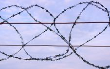 Free Barbed Wire Royalty Free Stock Photography - 16085987