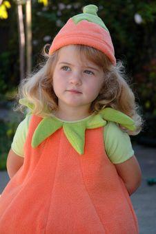 Free Pumpkin Girl Royalty Free Stock Images - 16086579