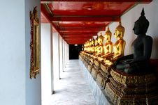 Free Golden Buddha At Wat Pho Bangkok Thailand Royalty Free Stock Image - 16088536