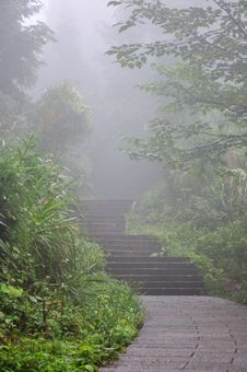 Free Road And Steps In Fog Royalty Free Stock Photography - 16088927