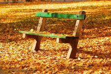 Free Autumn Royalty Free Stock Photo - 16089435