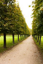 Free Alley In Park, Arkhangelskoe Stock Image - 16094171