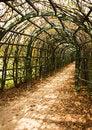 Free Trellis Arches, Arkhangelskoe Royalty Free Stock Photos - 16095848
