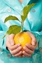 Free Hands Lemon Fresh Royalty Free Stock Image - 16098346