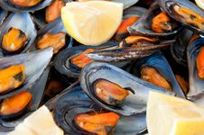 Free Mussels Boiled With A Squeeze Of Lemon Stock Images - 16094264