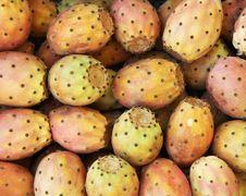 Cactus Fruit Texture Royalty Free Stock Image
