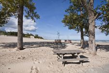 Free Picnic Area At Dunes State Park Royalty Free Stock Image - 16096606