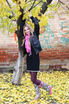 Free Beauty Blond Girl. Autumn Royalty Free Stock Image - 16097266