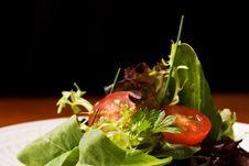 Free Fresh Salad Stock Image - 16098001