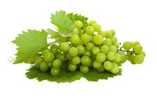 Free Fresh Grapes And Leaves Royalty Free Stock Photos - 16099838