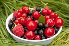 Free Mixed Summer Berries Royalty Free Stock Image - 16099846
