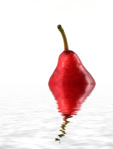 Free Red Pear Stock Image - 1611161
