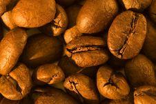 Free Coffee Beans Royalty Free Stock Photo - 1611175
