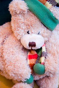 Christmas Bear Stock Photography