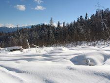 Free Winter Landscape Royalty Free Stock Photos - 1614968
