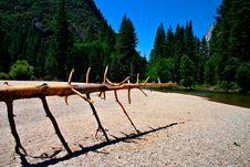 Free Yosemite National Park, USA Royalty Free Stock Photos - 1617098