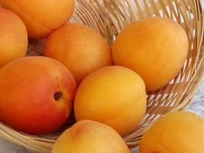 Free Apricots Royalty Free Stock Images - 1618369