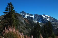 Mt Shuksan Royalty Free Stock Image