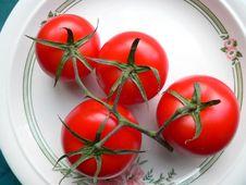 Free Ripe Tomatoes Stock Photo - 1619390