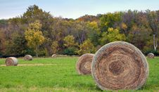 Free Hay Bales Stock Image - 1619561