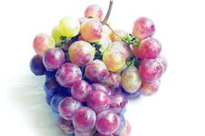 Free Grapes Royalty Free Stock Photography - 16102087