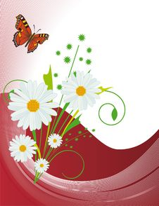 A Background With Daisies And Butterflies Stock Image