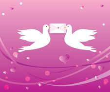 Free Loving Doves Stock Photography - 16103492