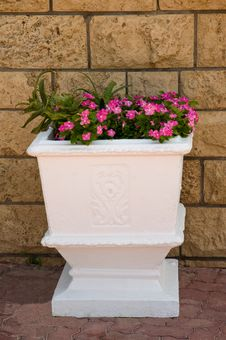 Large Pot With Pink Flowers. Royalty Free Stock Images