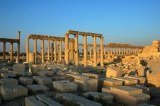 Free Site Of Palmyra Syria Stock Photo - 16116970