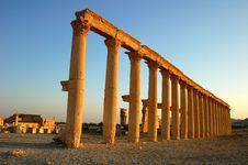 Free Site Of Palmyra Syria Royalty Free Stock Images - 16117239
