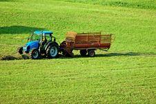 Free The Hay Harvest Royalty Free Stock Photo - 16118185