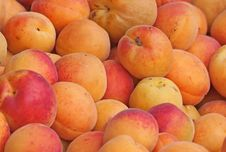 Free Fresh Natural Apricot Background Stock Image - 16119081