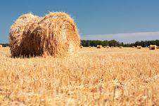 Free Wheat Haystacks Stock Image - 16119731