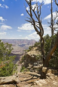 Free Grand Canyon View Royalty Free Stock Image - 16123086