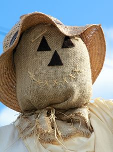 Free Scarecrow Face Royalty Free Stock Images - 16124119