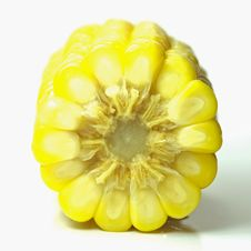 Free Sweet Corn Stock Photography - 16126712