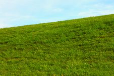 Free Green Meadow Stock Photography - 16126752