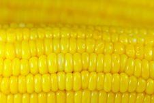 Free Sweet Corn Background Royalty Free Stock Photos - 16126928