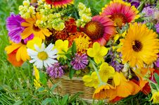 Free Beautiful Flowers In A Basket Royalty Free Stock Image - 16147336