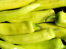 Free Green Peppers Royalty Free Stock Images - 16148919