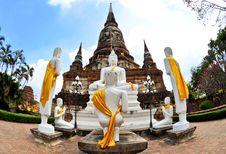 Free Big Buddha Royalty Free Stock Image - 16151276
