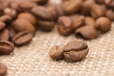 Free Brown Coffee Grains On A Sacking Stock Images - 16151444