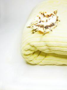 Free Sea Shell On Bathing Towel Royalty Free Stock Photos - 16151628