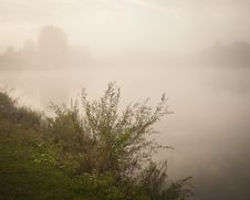 Free Misty Nature Scene Landscape Royalty Free Stock Photos - 16152928