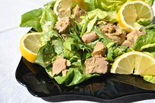Tuna Salad With Lemon Stock Photography