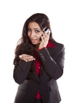Free Business Woman On Phone Explaining Stock Photos - 16153653