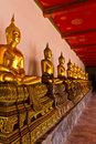 Free A Row Of Golden Buddha Statue Royalty Free Stock Photo - 16165845