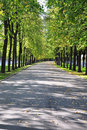 Free Deserted Alley. Royalty Free Stock Photography - 16166977