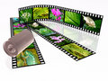 Free Nature Royalty Free Stock Photos - 16168218