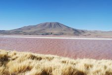 Free Laguna Colorada Stock Image - 16164101
